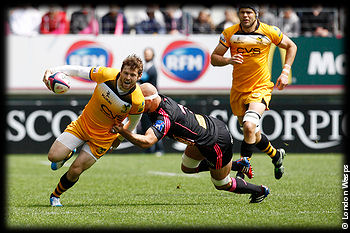 Stade Francais London Wasps