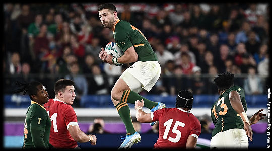 Wales v South Africa Willie le Roux RWC2019